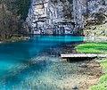 Spring of Krupa river (41212990232).jpg