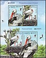 Stamp of Belarus - 2019 - Colnect 862610 - White Stork Ciconia ciconia.jpeg