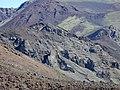 Starr-031001-0065-Artemisia mauiensis-habit-Crater HNP-Maui (24376706520).jpg