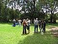 Starr-120508-5615-Eucalyptus sp-HBT with HISC Council-MISC Piiholo-Maui (25115961386).jpg