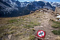 Stay on Trail sign, Forest Canyon Overlook, Trail Ridge Road, Rocky Mountain National Park.jpg