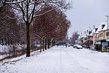 Steinlachallee-mit-Schnee.jpg