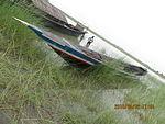 Still boat in Chars of Jamuna river at Bogra 16.jpg