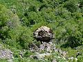 Stone-Mushroom.JPG