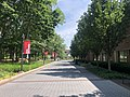 Stony brook west campus.jpg