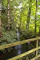Stream near Park Farm - geograph.org.uk - 549751.jpg