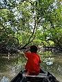Sundarban-Struggle of life.jpg