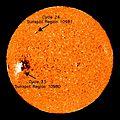 Sunspot 10981 Solar Cycle 24.jpg