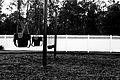 Swings (3096187593).jpg