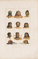 Têtes de différentes castes sauvages