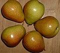 T-pears.jpg