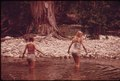TEENAGE GIRLS WADING THE FRIO CANYON RIVER NEAR LEAKEY TEXAS, WHILE ON AN OUTING WITH FRIENDS NEAR SAN ANTONIO - NARA - 554903.tif