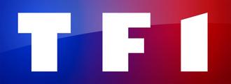 TF1 - Image: TF1 logo 2013