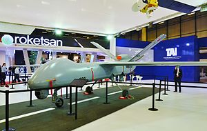 Turkish Aerospace Industries - TAI Anka at the stand of TAI during the IDEF 2015