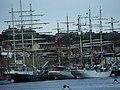 Tall Ships Race - geograph.org.uk - 31255.jpg