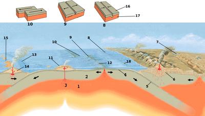 1- Astenosfera, 2- Litosfera, 3- Punto caldo, 4- Crosta oceanica, 5- Placca in subduzione, 6- Crosta continentale, 7- Zona di rift continentale (Nuovo margine di placca), 8- Placca a margine convergente, 9- Placca a margine divergente, 10- Placca a margine trasforme, 11- Vulcano a scudo, 12- Dorsale oceanica, 13- Margine di placca convergente, 14- Strato vulcano, 15- Arco isola, 16- Placca 17- Astenosfera, 18- Fossa