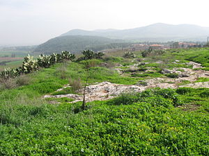 Jezreel (city) - Tel Jezreel looking east toward Gilboa.