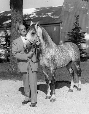 Wadsworth, Illinois - Tempel Farms founder Tempel Smith with one of his stallions in 1958.  The farm was then located in Spring Grove, Illinois.