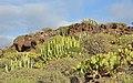 Tenerife Landscape R01.jpg