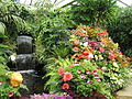 The Butchart Gardens (Greenhouse) (16.08.06) - panoramio.jpg