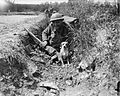 The German Spring Offensive, March-july 1918 Q6682.jpg