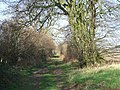 The Peddars Way - geograph.org.uk - 686843.jpg
