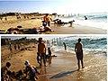 The beach of neve dekalim.jpg