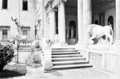 The steps up to the loggia of Villa Medici.png