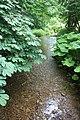 The stream near Levisham Church - geograph.org.uk - 1376515.jpg