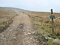 The track up to Windegg - geograph.org.uk - 366214.jpg