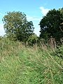 There was at one time a Railway line here - geograph.org.uk - 246952.jpg