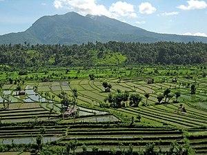 Bali Travel Guide At Wikivoyage