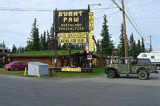 Tok, Alaska - Burnt Paw in Tok