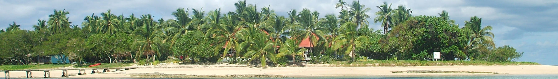 Tonga banner Beach with palms.jpg