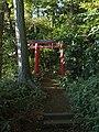 Torii (鳥居) at Inari Shrine (稲荷神社) in Soshigaya Guanyin Hall (祖師谷観音堂) - panoramio.jpg