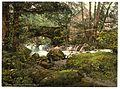 Torrent Walk I, Dolgelly (i.e. Dolgellau), Wales-LCCN2001703478.jpg