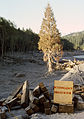 Toutle River Bridge Destruction Souvenirs After Mt. St. Helens Eruption.jpg