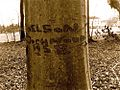 Tree with Nelson engraved.jpg