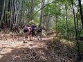 Trekking in Chiang Rai Province 2007-05 1.JPG