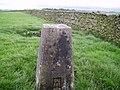 Trig Pillar near Howith Farm - geograph.org.uk - 264520.jpg