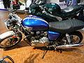 Triumph Thruxton 900 2008.JPG