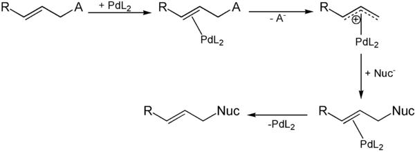 Mechanismus der Trostschen asymmetrische allylische Alkylierung