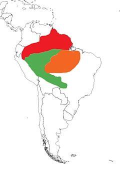 Distribuição aproximada das espécies: P. crepitans (vermelho), P. leucoptera (verde) e P. viridis (laranja).