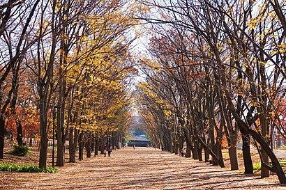 대중 교통으로 鶴間公園 에 가는법 - 장소에 대해