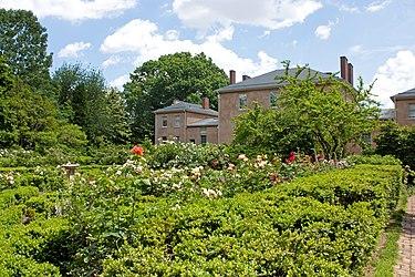 Tudor Place flower garden 2011 2.jpg