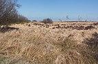 Tussen Belle Croix en Baraque Michel, hoogveenpanorama foto5 2017-03-28 12.13.jpg