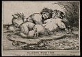 Two sleeping water creatures, similar to mermaids. Etching b Wellcome V0007454.jpg