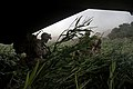 U.S. Marines with Golf Company, 2nd Battalion, 8th Marine Regiment and Afghan National Army soldiers move after exiting a Marine Corps CH-53E Super Stallion helicopter assigned to Marine Heavy Helicopter 130820-M-SA716-079.jpg