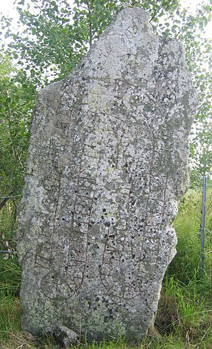 Viking runestones - The rune stone U 504.