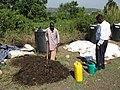Urban bio materials (organic waste) (6881915675).jpg